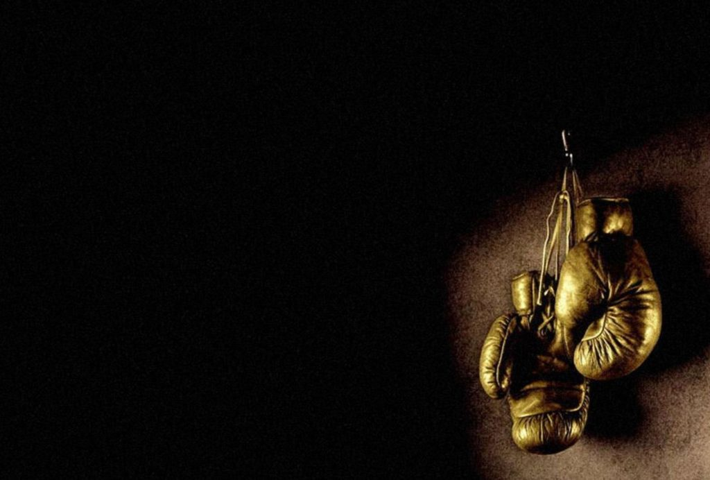 boxing-glove-1781x1203[1]