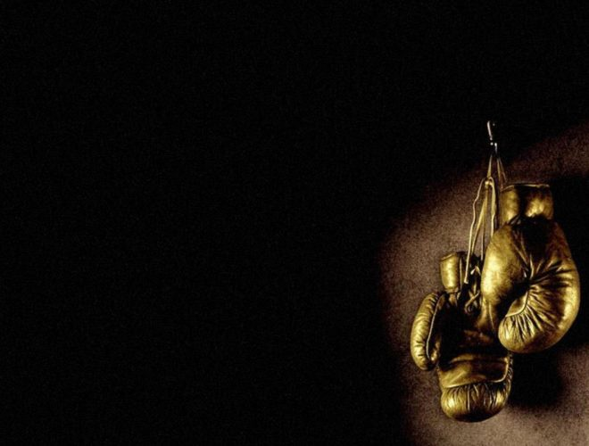 boxing-glove-1781x1203[1]